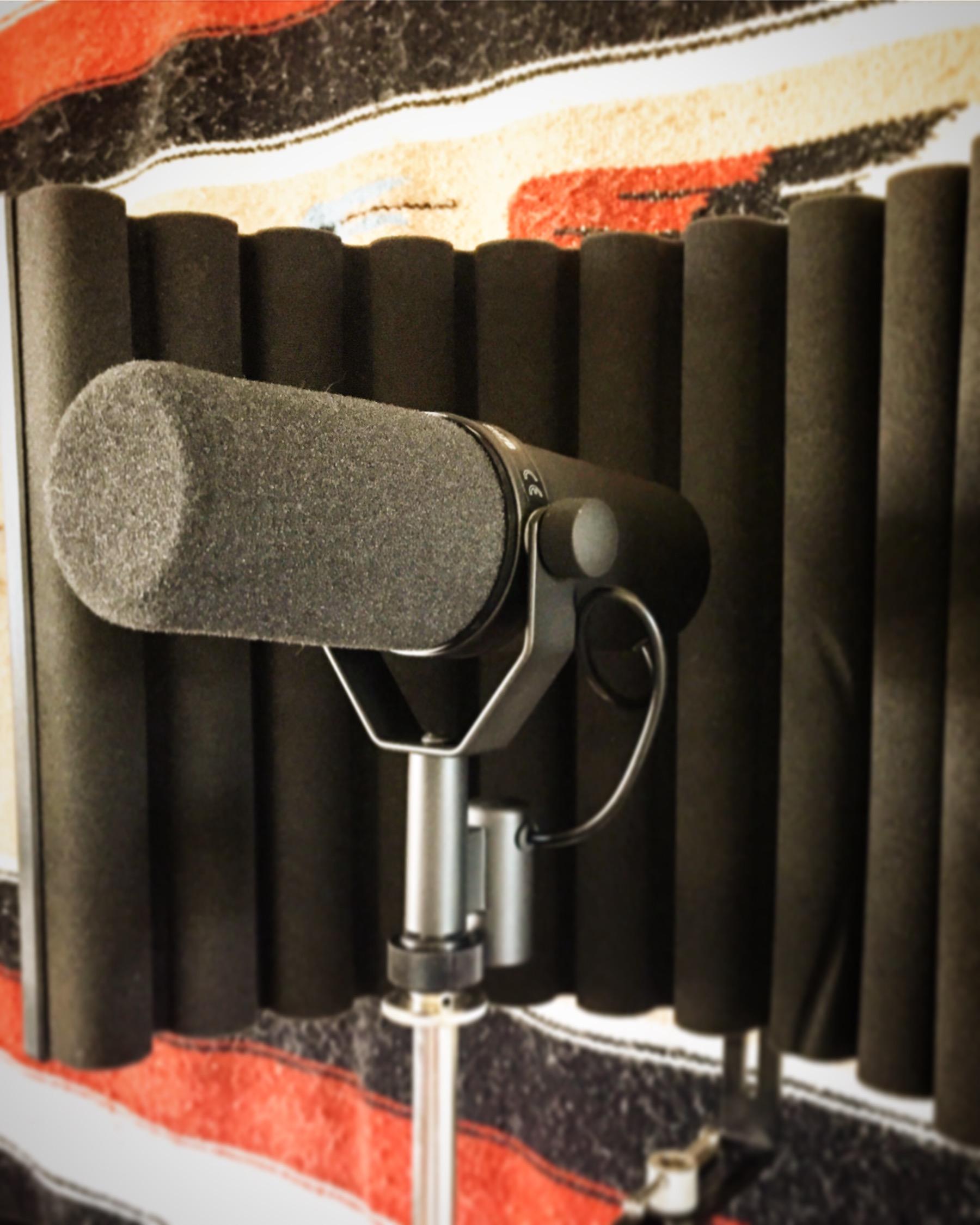 Shure SM7B At TwoCat Studios In Tucson